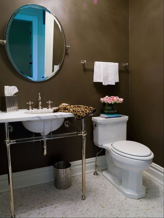 Brass And Lucite Double Towel Holder Over Toilet Cottage