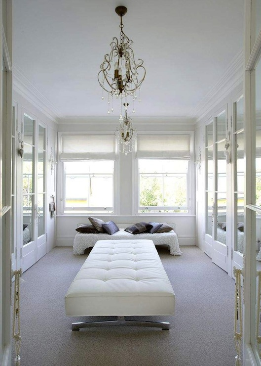 Closet French Doors Design Ideas