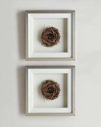 Rustic Frame Shadow Boxes Pottery Barn