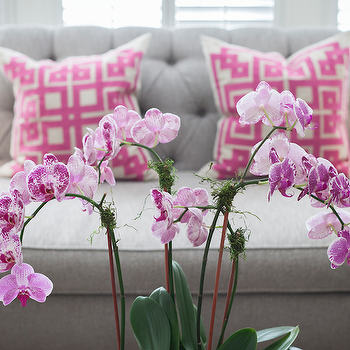 Pink Greek Key Pillows, Contemporary, living room, Lucy and Company