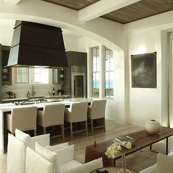 Island Range Hood Transitional Kitchen Alys Beach
