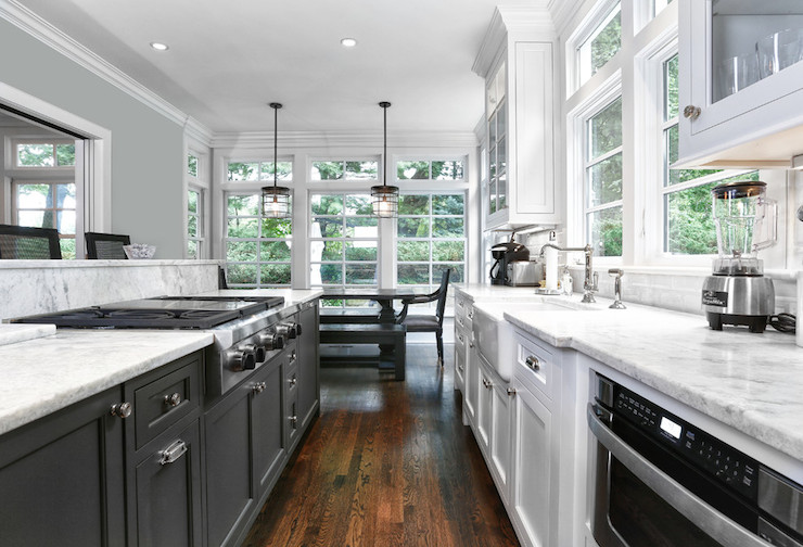 black and white galley kitchen transitional kitchen