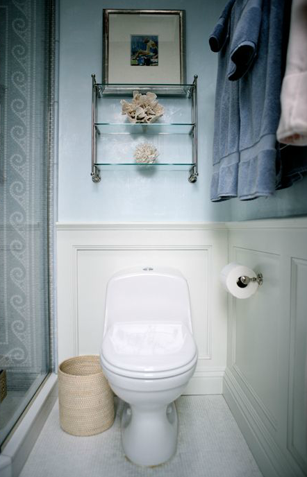 Over the toilet shelf transitional bathroom sage design for Bathroom over the toilet shelf