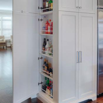 Hidden Refrigerator Design Ideas