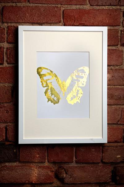 Framed Split Butterfly Wall Art Pbteen