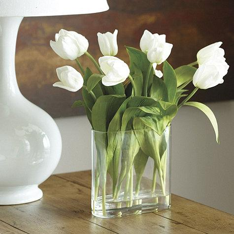 Tulips In Clear Vase