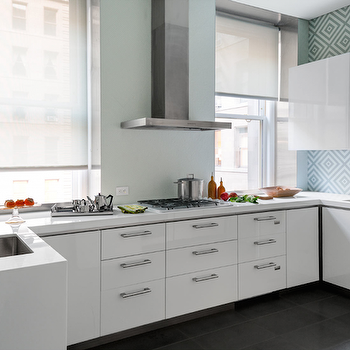 White Lacquered Flat Front Kitchen Cabinets Modern Kitchen