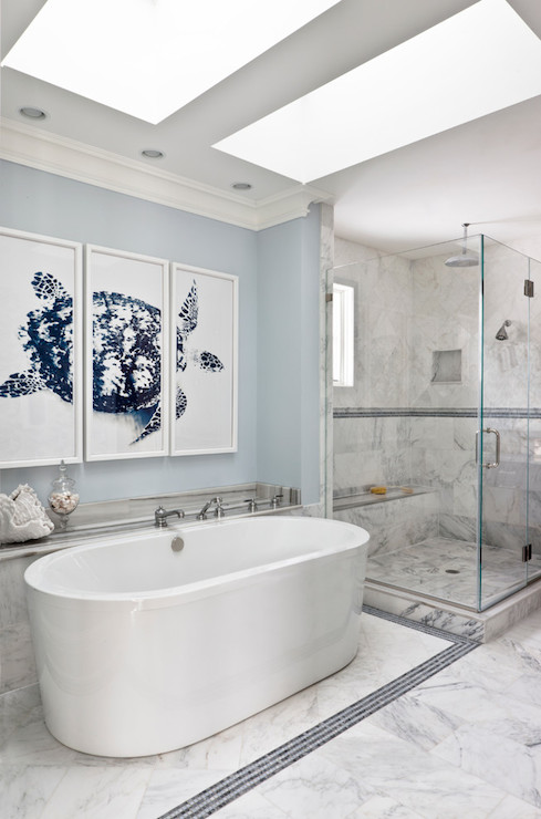 Blue bathrooms transitional bathroom benjamin moore for Small galley bathroom ideas
