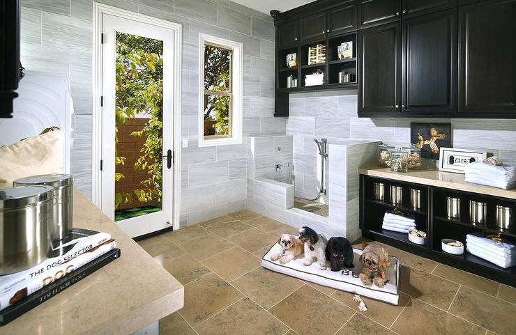 Mudroom Dog Shower Design Ideas