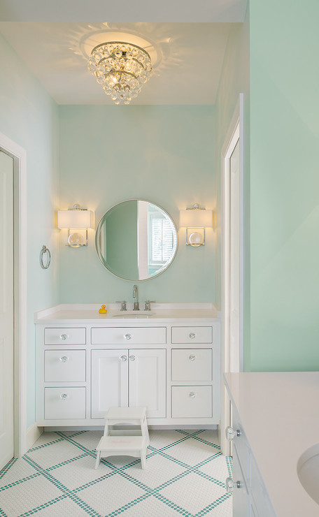 Mint green bathrooms transitional bathroom moore for Mint green bathroom ideas