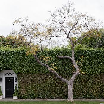 Hidden House, Transitional, home exterior, Disc Interiors