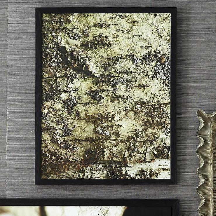 Birch Organic Textures Green Wall Art