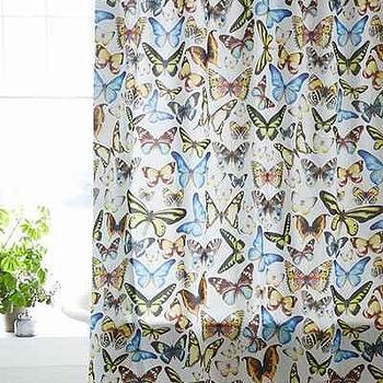 Plum and Bow Entomology Butterflies Shower Curtain