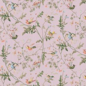 Cole And Son Hummingbirds Lilac Wallpaper