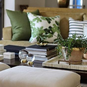 Charmant Beige And Green Living Rooms
