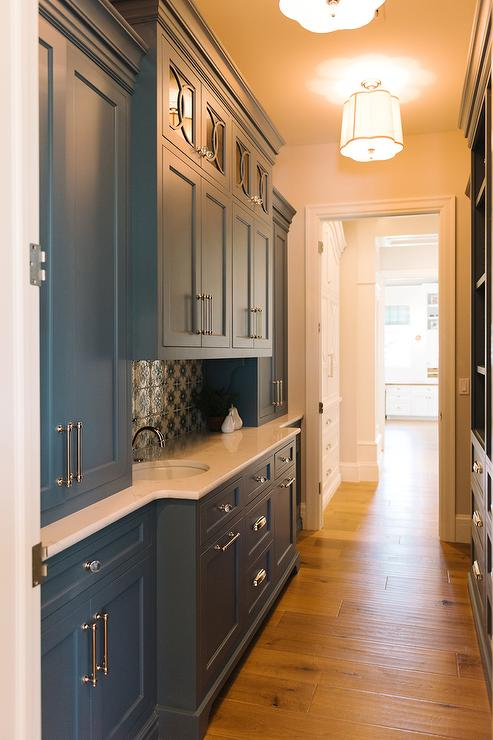 Blue Galley Butler Pantry Transitional Kitchen