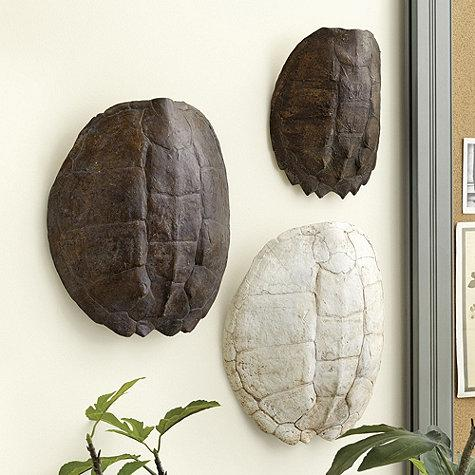 Turtle Wall Decor gator turtle shell wall decor - neiman marcus