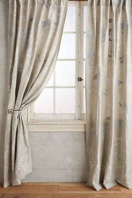 Zoe Embroidered Multicolored Curtain
