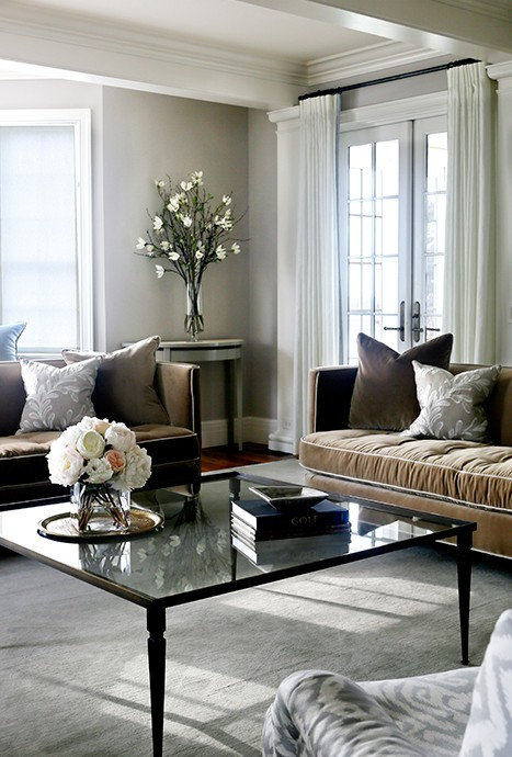 Brown Velvet Sofas With Gray Pillows Transitional