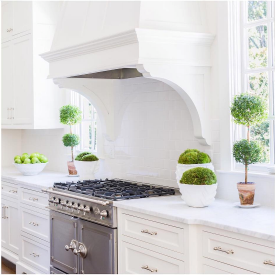 White Kitchen Extractor Hood kitchen hood corbels design ideas