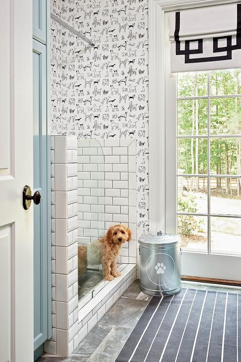 How To Tile A Dog Room Walls