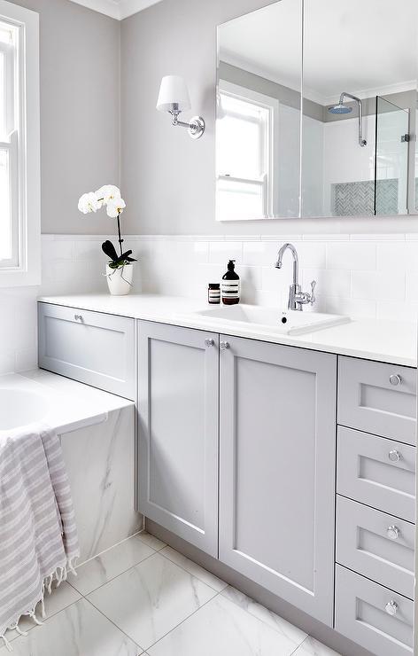 Gray Shaker Bath Vanity Cabinets With Rectangular Pivot Mirror Transitional