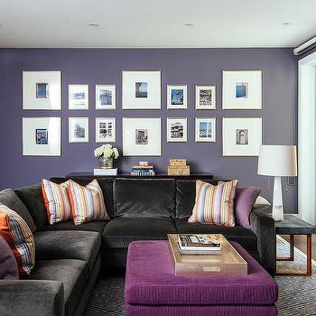 Purple Living Room Walls Design Ideas