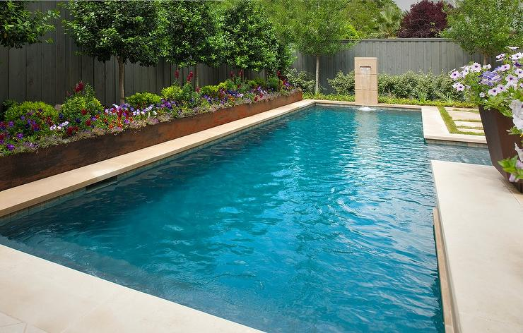 Savannah holly trees by pool transitional pool for Icf pool