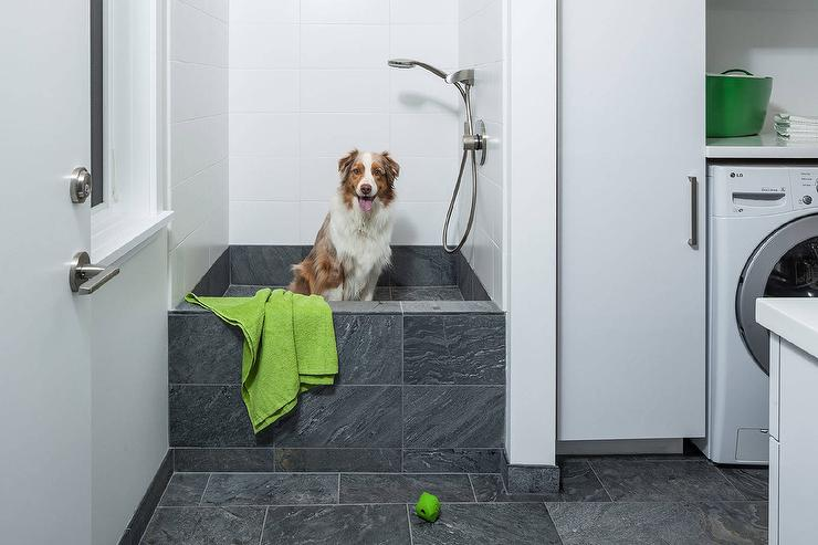 Laundry Room With Dog Bath Shower Contemporary Laundry