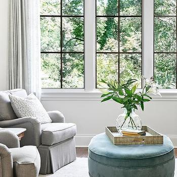 Oval Windows Transitional Living Room Alex Hayden