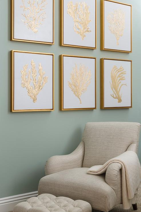 Gold Sea Fan Art with Gold Float Frames - Transitional - Living Room