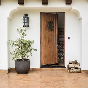 Potted Plant Next Ot Front Door Design Ideas