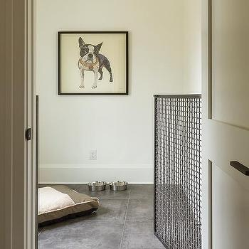 Dog Room Design Design Ideas