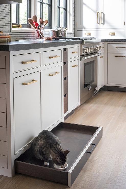 Pull Out Hidden Pet Food Drawer Transitional Kitchen