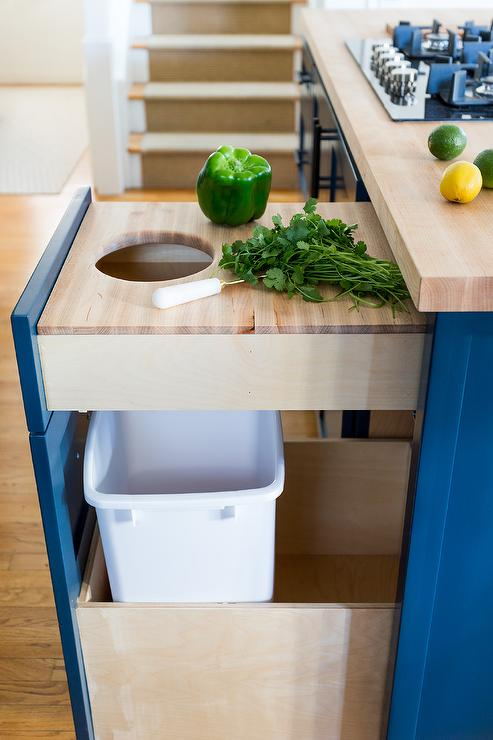 Hidden Garbage Can In Transitional Kitchen Cabinetry