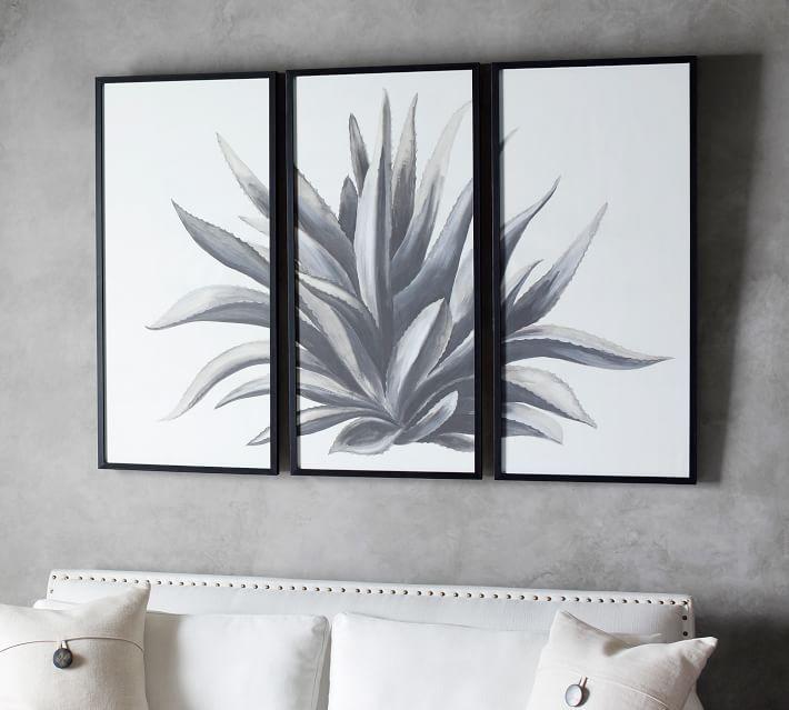 Black White Aloe Triptych Framed Wall Art