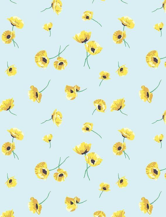 Yellow Poppy Flowers Sky Blue Wallpaper