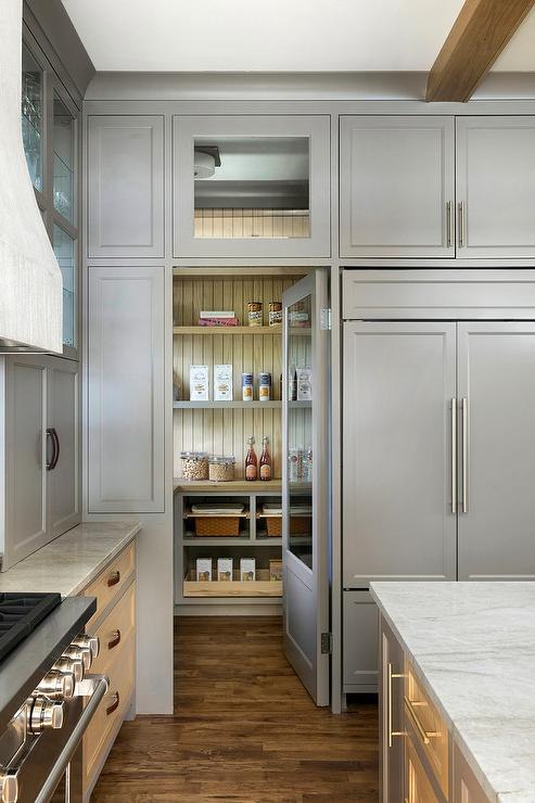 Hidden Walk In Pantry Design Ideas