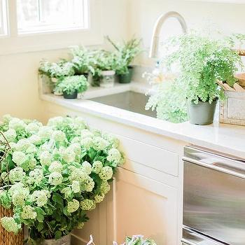Cream Kitchen Cabinets Transitional Farrow